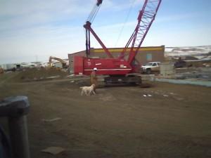 crane unloading flatbed