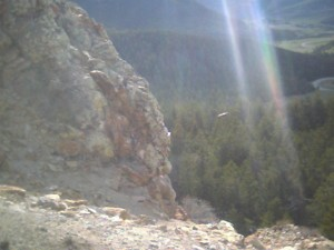 sunrays and bird in flight cooke city montana